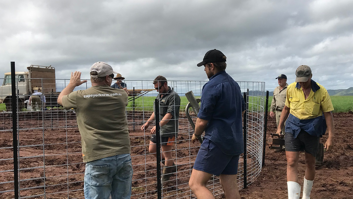 Oliver McConnachie, Peter Inderbitzen and others installing pig trap at Kureen Farming